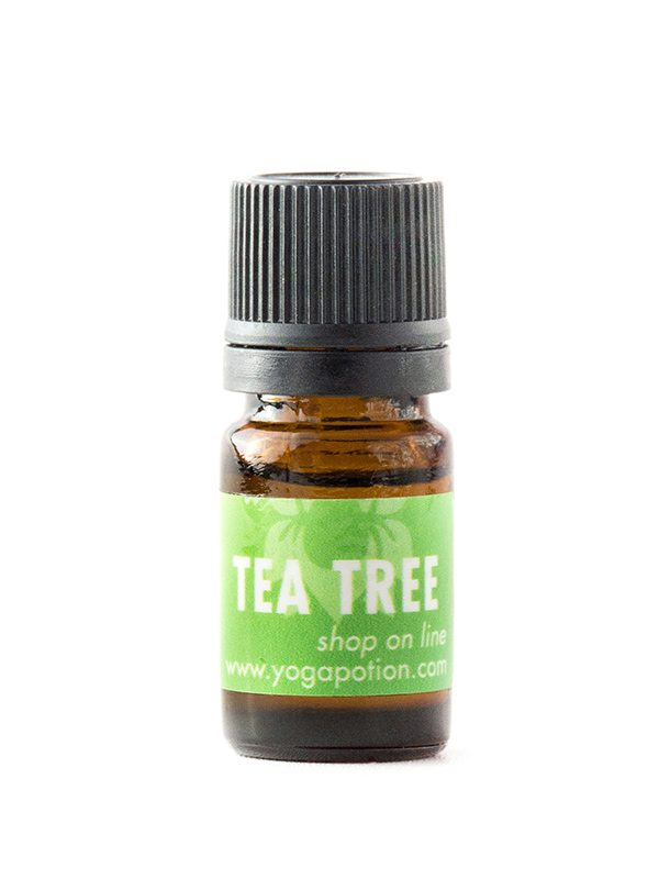 Tea Tree essential oil, natural cleaner, essential oil cleaning, melaleuca oil,